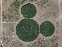 Hidden Mickey on Google Maps | The Disney Blog on
