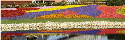 Flower Tapestry - 2009 Flower & Garden Festival