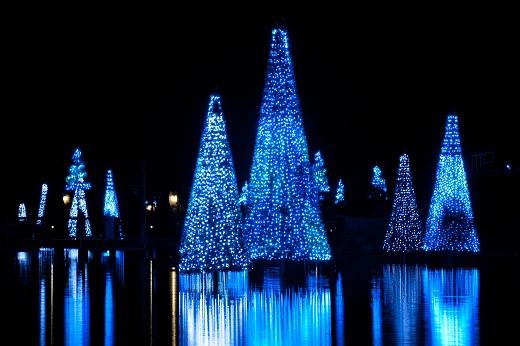 SeaWorld Orlando Christmas Celebration A Great Family Value   The ...