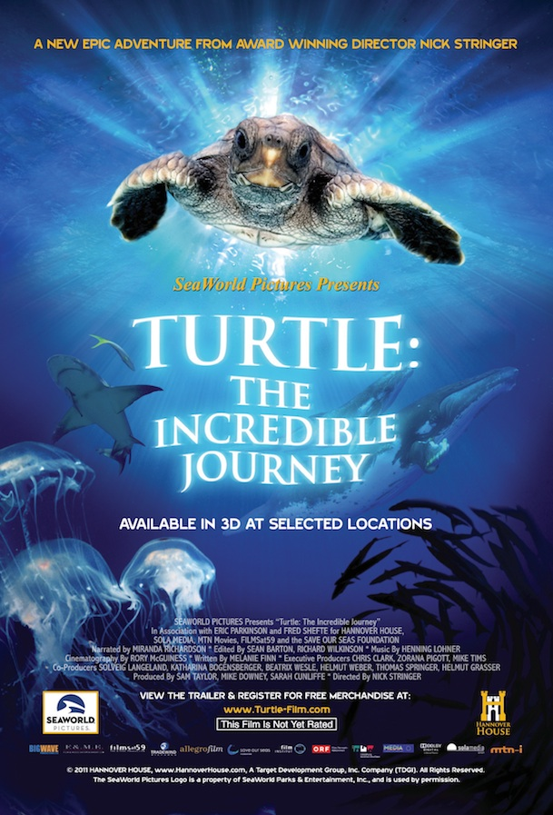 Turtle: The Incredible Journey Turtle The Incredible Journey SeaWorlds First Film will Premier