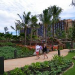 coconutwireless-flickr-aulani3