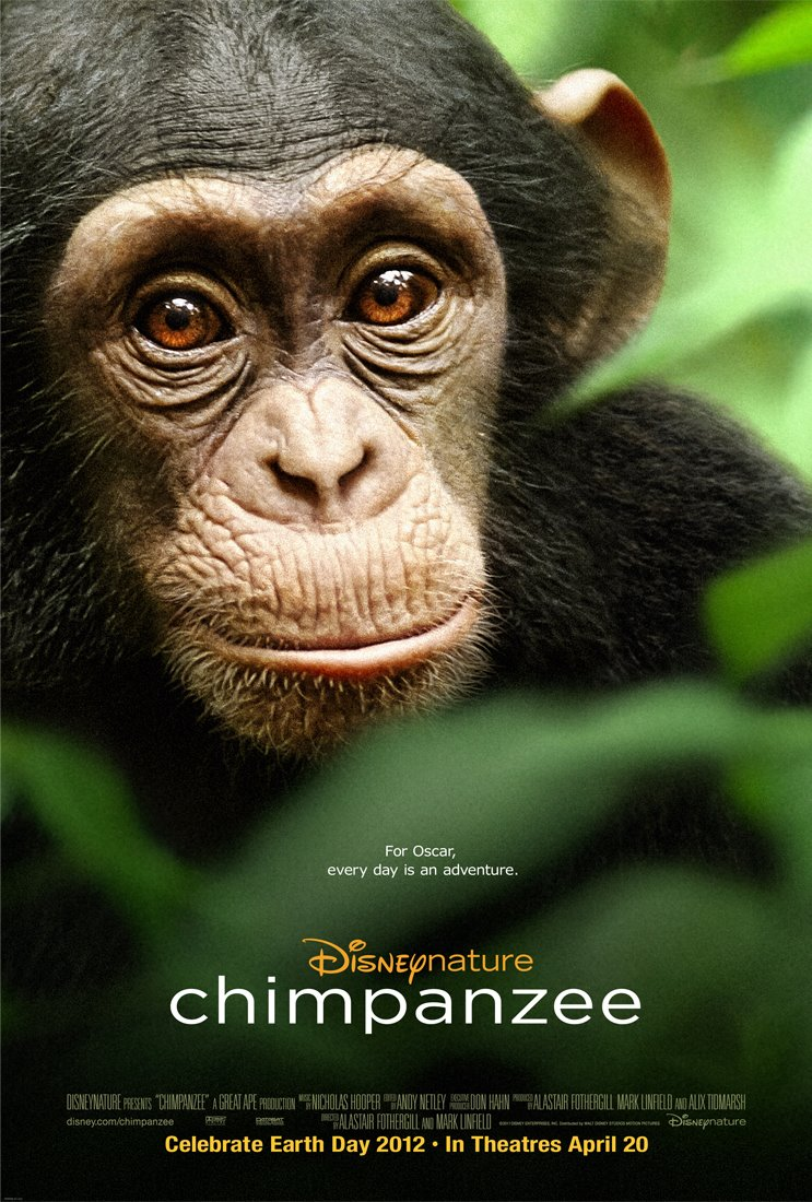 See Chimpanzee, Save Chimpanzees - DisneyNature to Donate