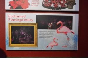 flamingo-way
