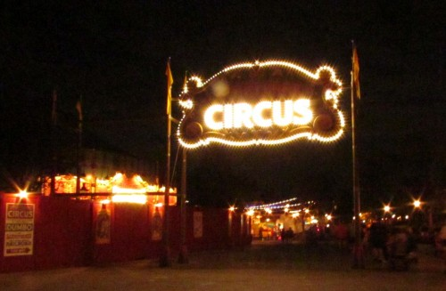 Magic Kingdom Storybook Circus Update - Marquee at night