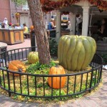 02-mk-halloween-liberty-square-2
