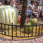 02-mk-halloween-liberty-square-3