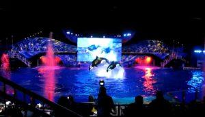 SeaWorld Orlando Christmas