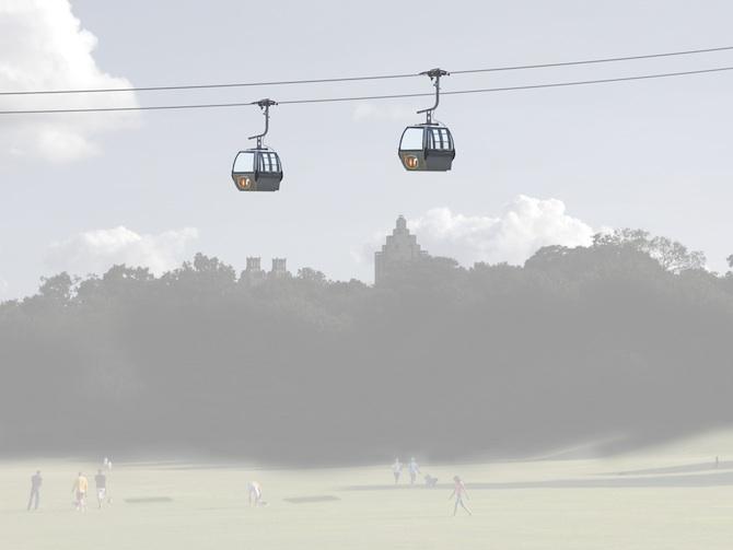 wire-gondola-frog