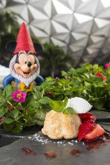 Garden-to-Table Delights at Epcot Fest