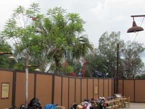 Word leaked that Festival of The Lion King will continue playing in Camp Minnie Mickey until the new location is ready. Construction pictures won't be that exciting as the walls pretty much block everything.