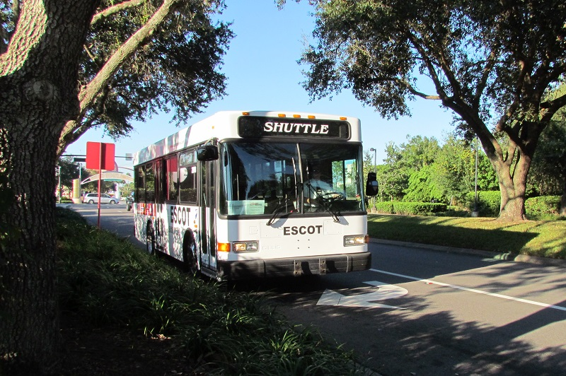 Disney has contracted with a shuttle service to help you make the short hop from Team Disney to La Nouba if you don't want to walk