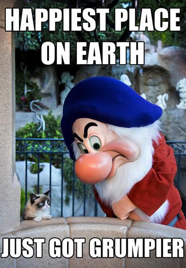 grumpy, cat, disney, disneyland, disney side, #disneyside, poster, meme,