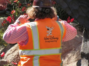 Imagineers are supervising the 'landscaping'
