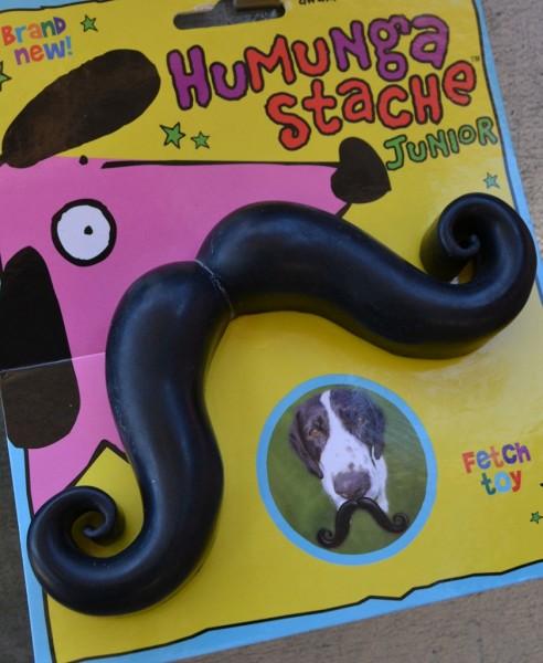 happy-hound-dtd-2