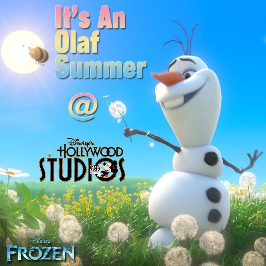 dhs-olaf-summer