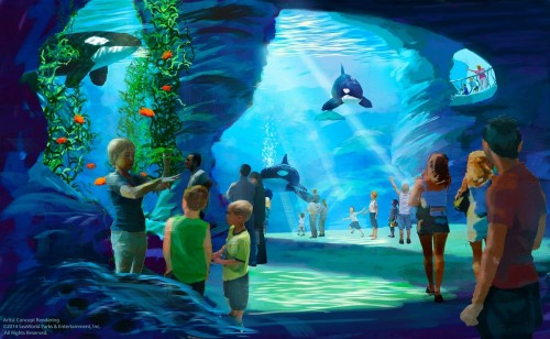 SEA_Underwater2-seaworld-orca