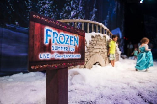 frozen-summer-fun-dhs