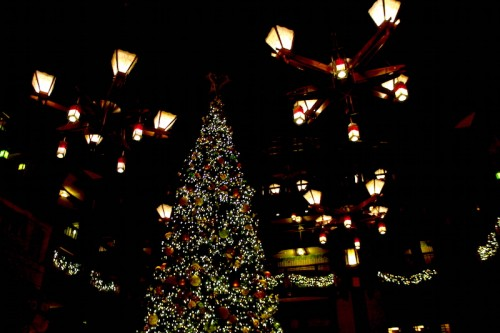 Disney's Grand Californain Hotel Christmas Tree