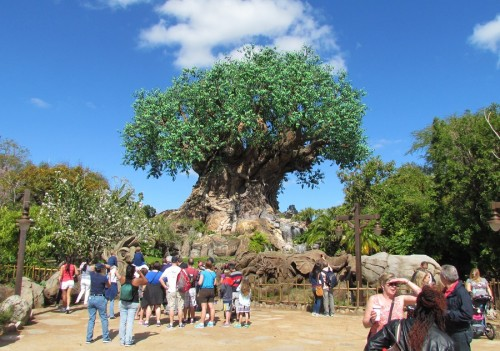05-tree-of-life-dak