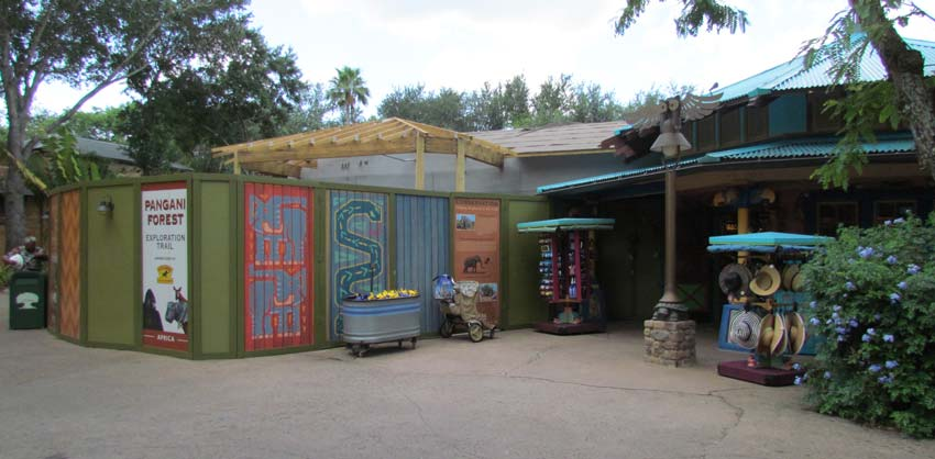 06-discovery-island-2