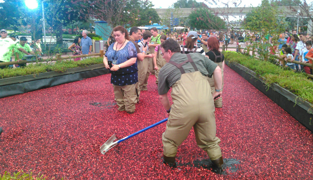 epcot-oceanspray-bloggers