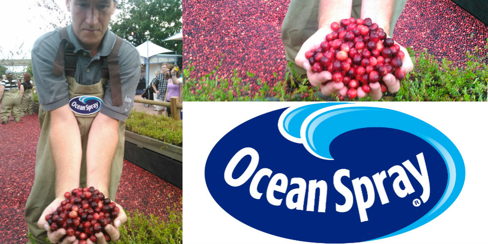 epcot-oceanspray-header