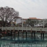 disneysprings-0116-18