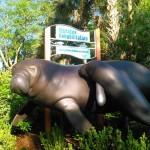 seaworld-manatees-signage