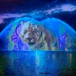 junglebook-dak-show