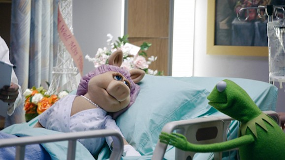 the-muppets-life-support