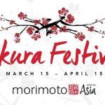 Sakura Festival at Morimoto Asia