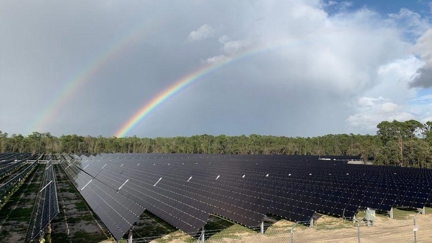 Disney World's mega 270-acre Solar farm now online